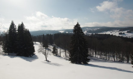 Zimní Šumava 2019
