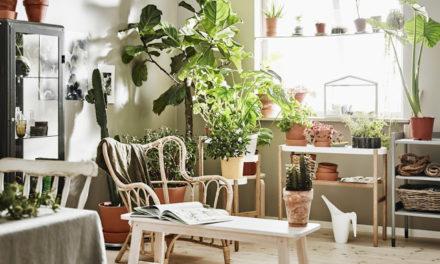 IKEA FESTIVAL pro lepší domov