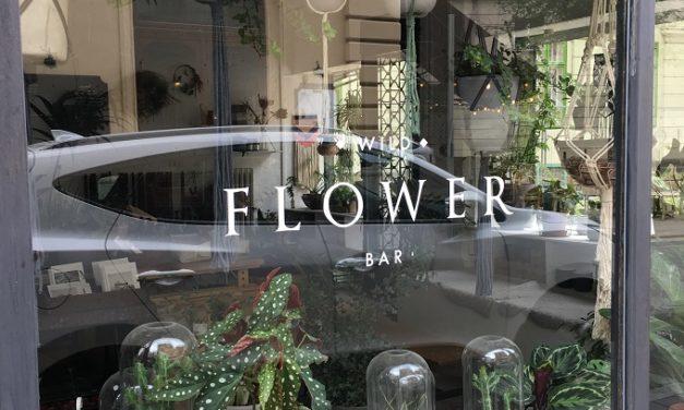♢ Wild ♢ Flower Bar