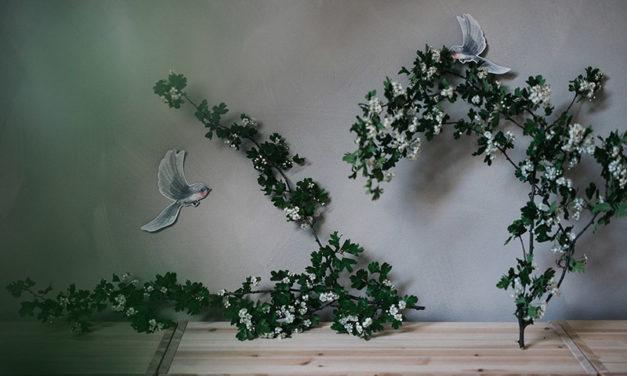 rozkvitnuté kríky
