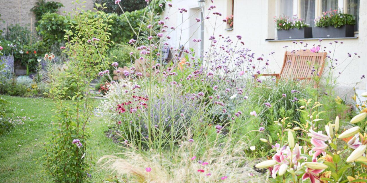 Naše venkovská a rozkvetlá zahrada